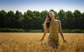 Картинка пшеница, поле, лето, девушка, природа, волосы