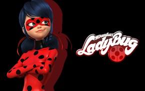 Картинка anime, ladybug, miraculous