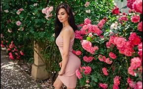 Картинка hot, sexy, boobs, flowers, Георгий Дьяков