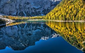 Картинка осень, лес, горы, озеро, отражение, Италия, Italy, Доломитовые Альпы, Южный Тироль, South Tyrol, Dolomites, Lake …