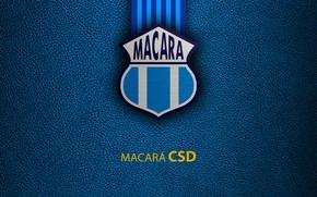 Картинка wallpaper, sport, logo, football, CSD Macara