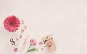 Картинка цветы, подарок, розы, лепестки, розовые, 8 марта, pink, flowers, гербера, petals, roses, gerbera, gift box, …