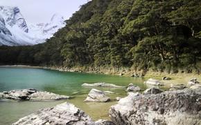 Картинка озеро, камни, берег, растительность, Lake Mackenzie Hut