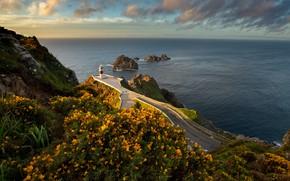 Картинка дорога, море, пейзаж, закат, цветы, природа, скалы, маяк