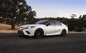 Картинка белый, асфальт, Toyota, седан, TRD, Camry, 2020