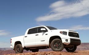 Картинка белый, Toyota, пикап, Tundra, 2019, рядом с каньоном