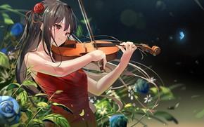 Картинка девушка, скрипка, розы