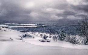 Картинка зима, снег, озеро, сосна