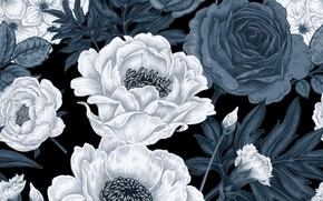 Картинка белый, цветы, серый, фон, узор, розы, текстура, pattern, seamless, гортензий, пионов, гвоздик