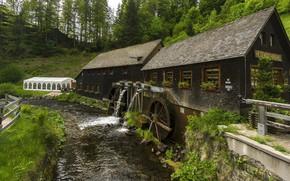 Картинка дом, река, мельница