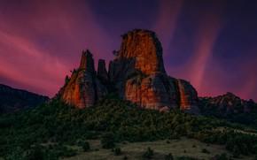 Картинка пейзаж, ночь, природа, скала, леса, Болгария, Боров Камък, Еди Адамов