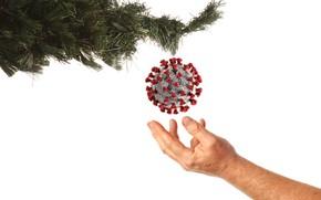 Картинка ёлка, вирус, праздники, пандемия