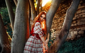 Картинка дерево, взгляд, свет, рыжая, Kaan ALTINDAL, Девушка