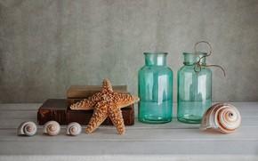 Картинка стекло, фон, книги, ракушки, бутылки, морская звезда, натюрморт