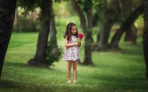 Картинка цветы, парк, ребенок, платье, девочка, Вера, Бармина Анастасия