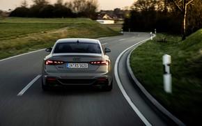 Картинка дорога, движение, Audi, купе, сзади, RS 5, 2020, RS5 Coupe