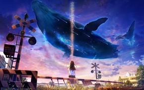 Картинка небо, девушка, фэнтези, кит, школьная форма