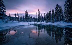 Картинка зима, лес, небо, снег, деревья, закат, отражение, река, мороз