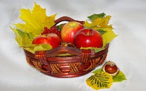 Картинка природа, настроение, яблоки, красота, корзинка, красивые, beautiful, beauty, harmony, обои на рабочий стол, cool, bouquet, …