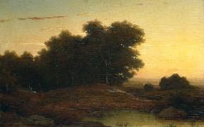 Картинка пейзаж, масло, картина, Louwrens Hanedoes, 1849, Лес на Закате, Луренс Ханедос