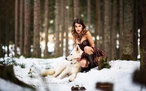 Картинка зима, лес, взгляд, снег, деревья, поза, модель, портрет, сапоги, макияж, платье, прическа, шатенка, красотка, сидит, …
