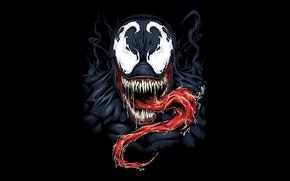 Картинка фон, чёрный, venom, MARVEL, веном