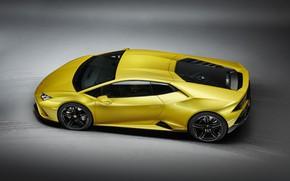 Картинка Lamborghini, Huracan, 2020, RWD, Huracan Evo