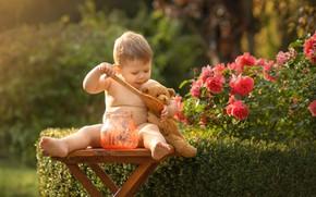 Картинка игрушка, розы, малыш, медведь, ложка, варенье