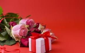Картинка день рождения, подарок, розы