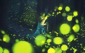 Картинка лес, девушка, girl, forest, светляки, fireflies, Paolo Lazzarotti