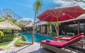 Картинка пальмы, вилла, зонт, бассейн, Seminyak, Villa Santhi
