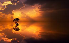 Обои облака, отражение, озеро, дерево