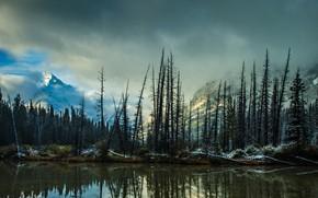 Картинка зима, осень, лес, облака, деревья, горы, ветки, озеро, отражение, стволы, склоны, вершины, ели, Канада, дымка, ...