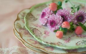 Картинка цветы, стиль, тарелки, хризантемы