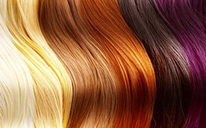 Картинка hair, human, different shades