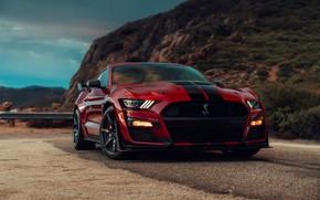 Картинка пасмурно, Mustang, Ford, Shelby, GT500, кровавый, 2019