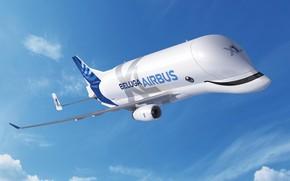 Картинка самолет, Небо, самолёт, Грузовой, Airbus, Beluga, A300, Airbus Beluga, Super Transporter, Beluga XL, грузовой самолёт ...