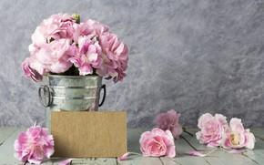 Картинка цветы, лепестки, ведро, розовые, vintage, wood, pink, flowers, beautiful, romantic
