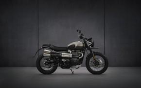 Картинка bike, motorcycle, triumph, 900, 2021, street-scrambler