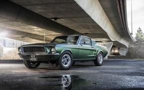 Обои Ford, Mustang, 1968, асфальт, GT 390, Bullitt, лужи