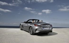 Картинка небо, серый, BMW, родстер, вид сзади, BMW Z4, M40i, Z4, 2019, G29
