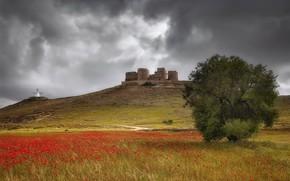 Картинка лето, природа, Castillo de Consuegra