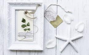 Картинка белый, звезда, листок, рамка, лепестки