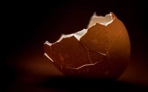 Картинка фон, скорлупа, яицо