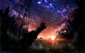 Картинка небо, звезды, деревья, закат