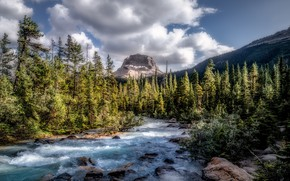 Картинка forest, Canada, river, sky, trees, nature, water, mountains, clouds, rocks, landscapes, sunlight, stream, 4k ultra …