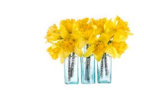 Картинка стекло, цветы, букет, желтые, белый фон, нарциссы, бутылочки
