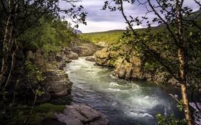 Картинка природа, река, каньон
