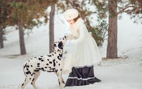 Картинка зима, лес, взгляд, снег, ветки, природа, поза, улыбка, парк, шапка, собака, девочка, сугробы, белая, далматинец, …