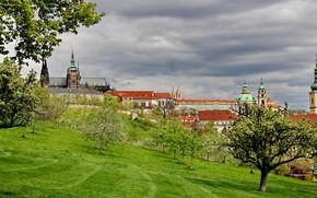 Картинка зелень, небо, трава, облака, деревья, тучи, дома, склон, Прага, Чехия